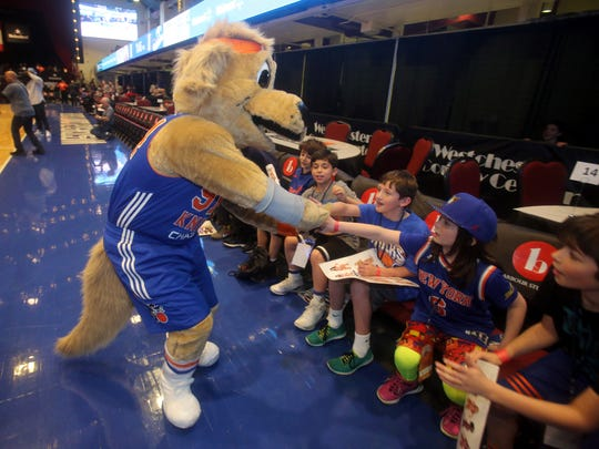 Dan Bova as Hudson, the mascot for the Westchester Knicks, greets young fans before a game at the Westchester County Center in White Plains March 24, 2017. Bova was invited by the team to see what it's like to be a team mascot.