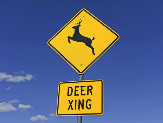 Deer crossing warning sign on road