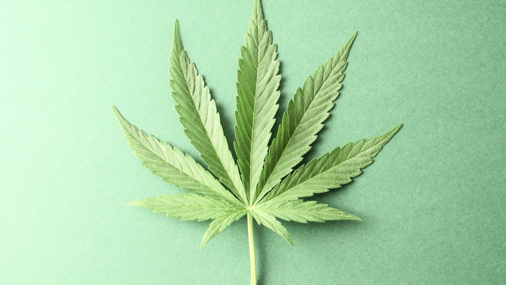 Marijuana or Moana? Woman says she was fired for viral ...
