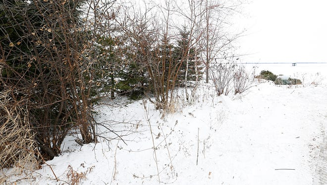 The body of 27-year-old Lindsey Klima was found deceased Monday January 1, 2018, in this group of pine trees just off of Lake Winnebago near Garden Drive, outside the city limits of Fond du Lac. Investigators believe Klima fell at the shoreline and died due to exposure to the cold. Doug Raflik/USA TODAY NETWORK-Wisconsin
