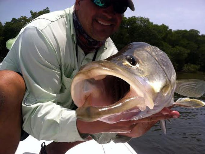 Snook Stamp Charters Capt. Greg Stamper caught and released this 38-inch snook using a topwater Bomber  Badonk-A-Donk last Wednesday while fishing the rising tides near Jug Creek.