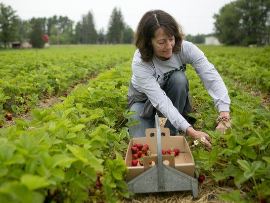 Altenburg's Strawberries