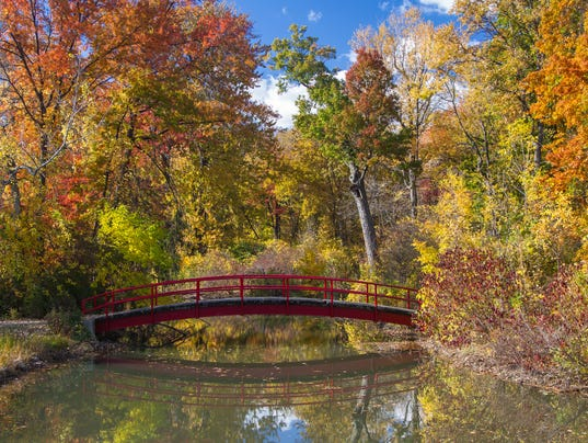 500px Photo ID: 126477967 - A cascade of autumn colors surround a foot bridge over stream on Belle Isle in Detroit