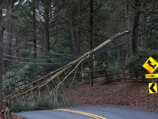 A tree rest on power lines blocking traffic along Centerville