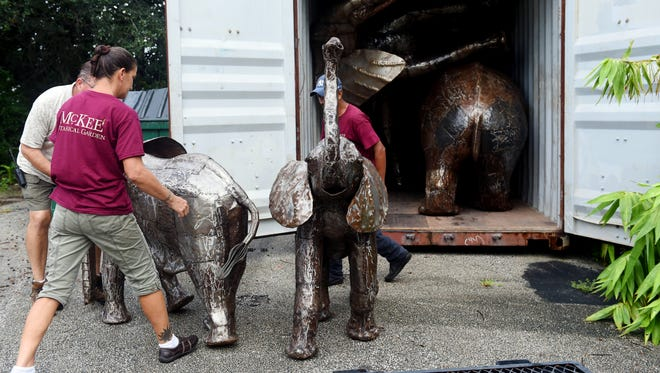 "Andreas Daehnick (from left), Nikki Stoltze and Jose Ramirez unpack a pair of small elephant statues to be placed among the trees at McKee Botanical Garden in Vero Beach as part of the the ""It's a Jungle Out There!"" exhibit that will officially be on display in early November. ""We are constantly looking for new exhibitions, and we have that connection to the former McKee Jungle Gardens so we thought it would be neat to bring back some of the animals that used to be here in the garden, but in statue form,"" said executive director Christine Hobart. In total, there will be 24 sculptures in 17 locations in the garden."