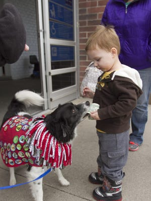 Following a command by trainer Bob Duman (out of view), Charlie B. Darwin collects a donation from 2 1/2-year-old Jason Stacy for the Salvation Army in front of the Genoa Township Wal-Mart. Charlie B. Darwin is one of two dog scouts brought by Duman and his wife Beth to ring a bell and collect donations.