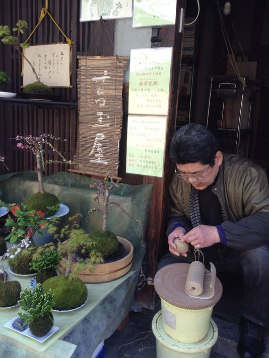 Crafts-Japanese Moss _Atzl.jpg