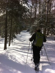 Amid towering conifers, a skier plies a trail in Green Mountain National Forest in 2013.