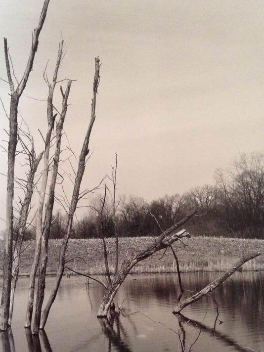 -dcn 0225 uu gallery Laszlo Szakala landscape.JPG_20150220.jpg