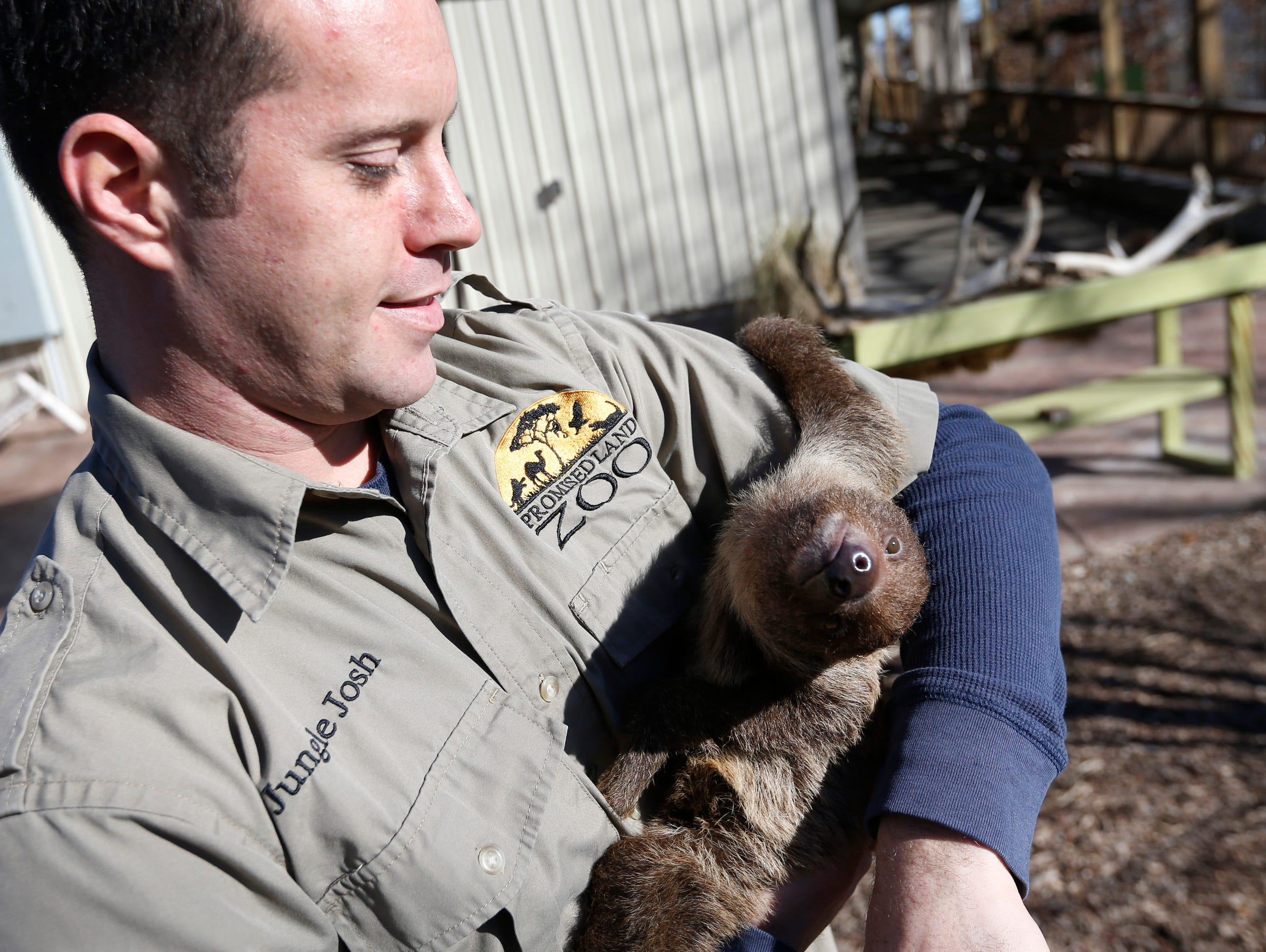 """Jungle Josh"" Remanned holds A sloth named Elmer at"