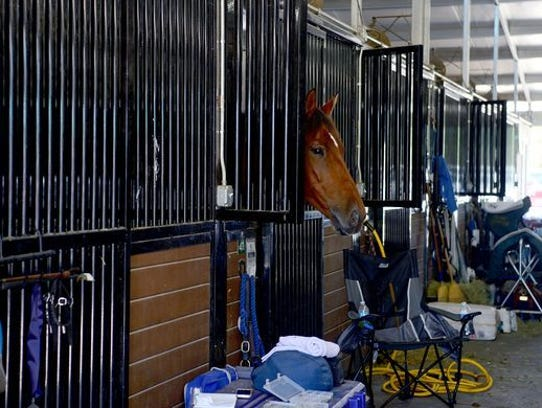 Tryon Equestrian Center has opened some of its stalls