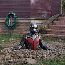 Marvel's motion picture Ant-Man  Scott Lang/Ant-Man (Paul Rudd)   Credit: Zade Rosenthal, Marvel  © Marvel 2014 [Via MerlinFTP Drop]