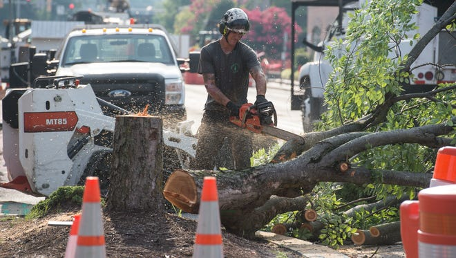 Thomas Whitlock uses a chainsaw to cut limbs from a fallen tree on East Main Street in Salisbury on Friday, July 21, 2017.