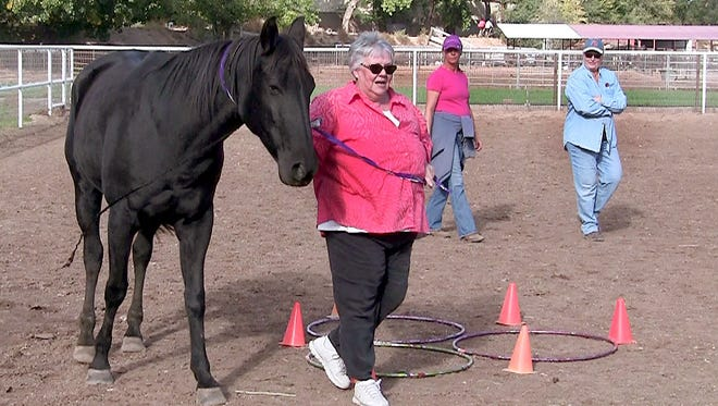 Kathy Pelletier, a Galeria de Corrales artist, leads a horse around an obstacle during an Equine Assisted Growth and Learning Association equine-assisted psychotherapy group. Co-faciliators equine specialist Debi Pierson and NMSU School of Social Work associate professor Wanda Whittlesey-Jerome observe from a distance.