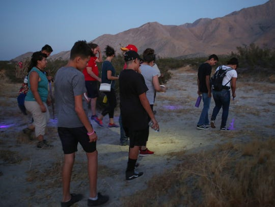 A group of people using UV flashlights search for scorpions