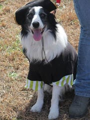 Jasper, who wore a pirate costume and won first place