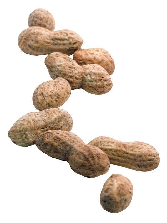 635875246966731672-CAL-Peanuts.jpg