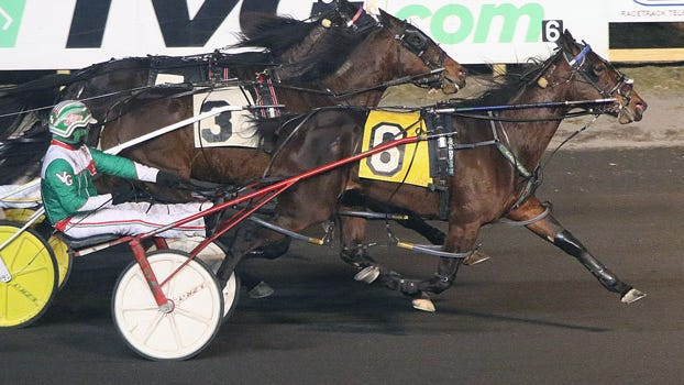 Odds On St Lucie and driver Vinny Ginsburg take the Friday, Jan. 24, 2020, feature at the Meadowlands.