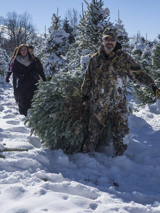 635838867888187757-tree-farm-3.jpg