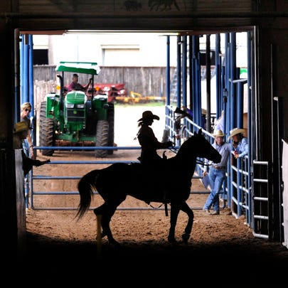 Delaney Delarosa of Hawley, 18, readies her horse before