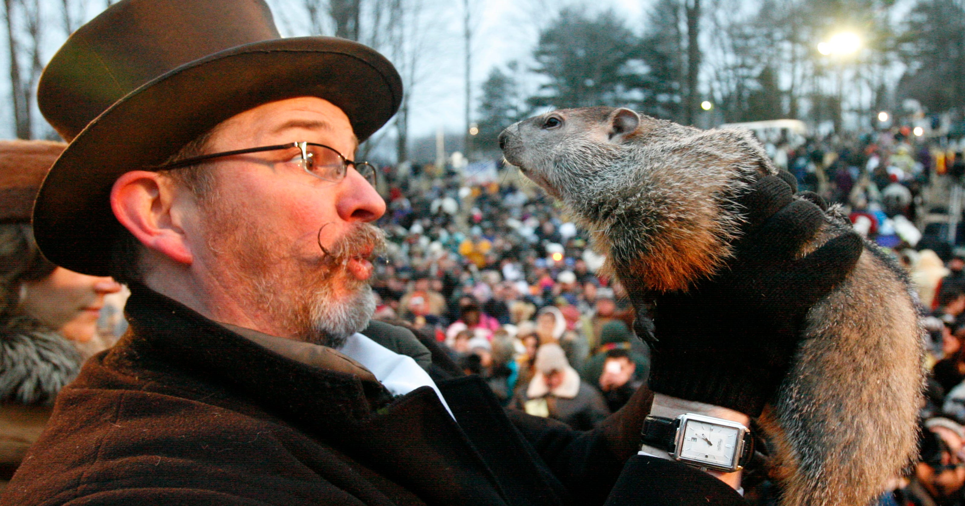 It's Groundhog Day! But how accurate is Punxsutawney Phil?