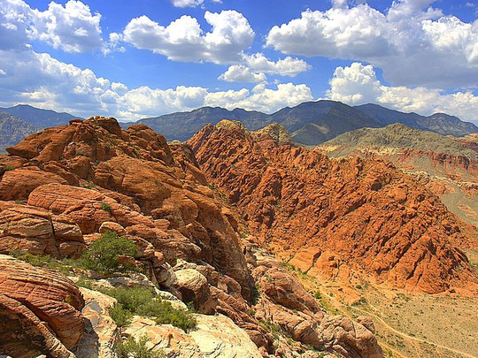 Red Rock National Conservation Area near Las Vegas, Nevada. (Fred Morledge, Wikimedia Commons)