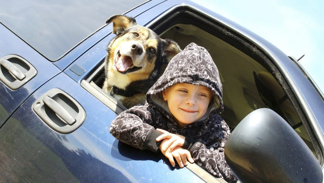Only one dog-friendly road trip in Arizona was ranked on Milk-Bone list.