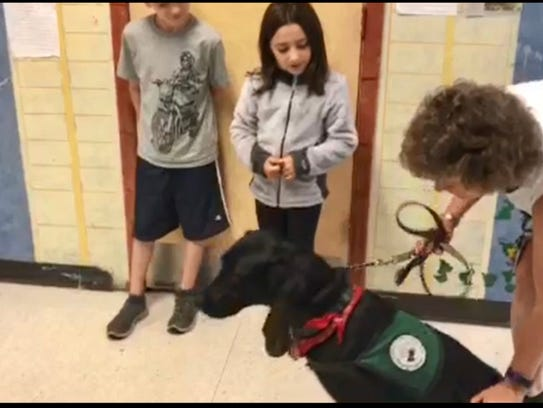 Training Seeing Eye Dogs Career