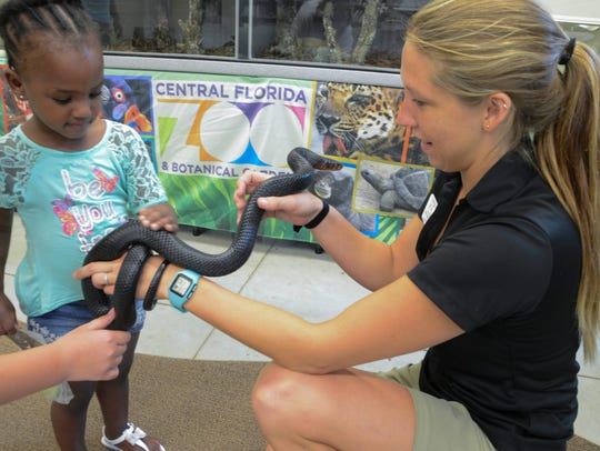 Jaliyah Simpson touches an Eastern Indigo snake held by Michelle Hoffman during an event in Titusville, Florida.