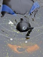 MusselsPigeonRvr17.jpg