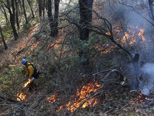 Shasta-Trinity National Forest firefighter Jesse Penland