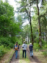 Zena Forest Products is offering public tours this summer with a look at the company's forest management practices and operations.