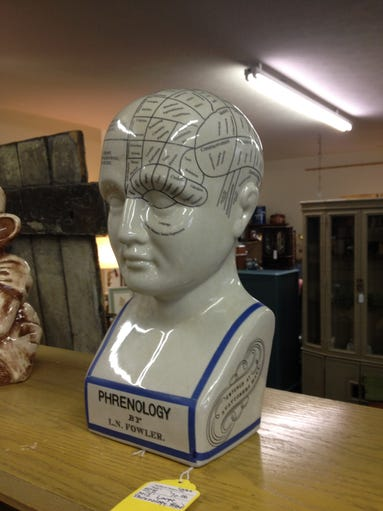 Phrenology head, $70. One of the unusual items on sale at Southport Antique Mall.
