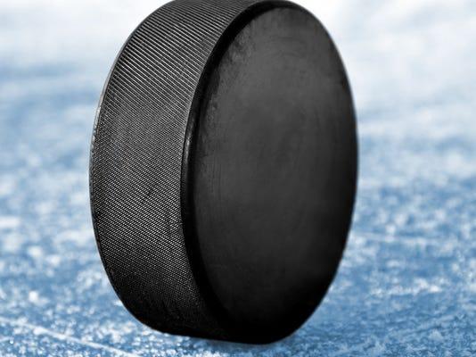 20141207_shutterstockelmirahockey.jpg
