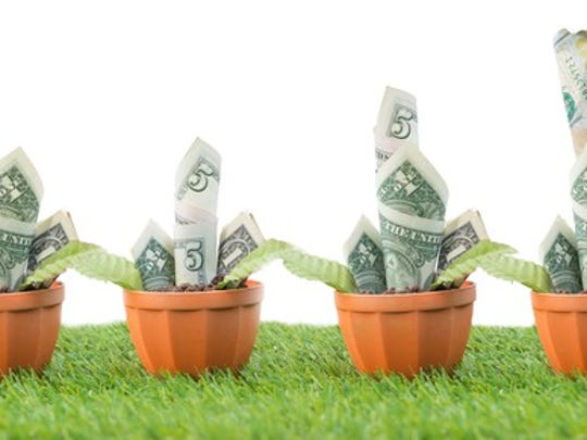 Plants with dollar bills for leaves growing over time.