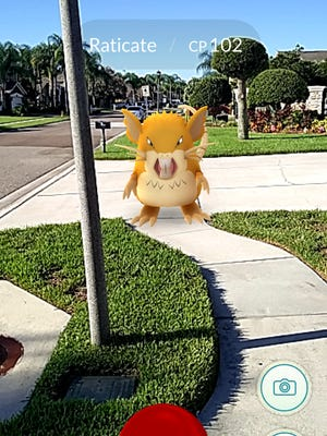 Monsters running wild on suburban sidewalks in Florida. What's next?
