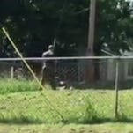 Police officer mows yard of woman whose lawnmower was stolen