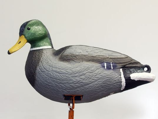 Hidden duck