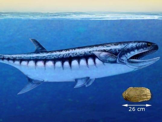 636372708612359182-big-fish.jpg
