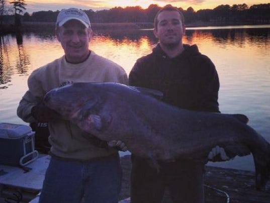 Man catches second largest catfish in nc state history for Lake gaston fishing