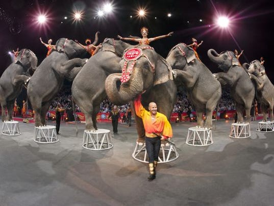 Ringling Bros. to Retire All Circus Elephants in May — 2 Years Early 635881118034621339-635611398239797109-AP-RINGLING-BROS-BARNUM-BAILEY-JINGLE-CONTEST-70345356