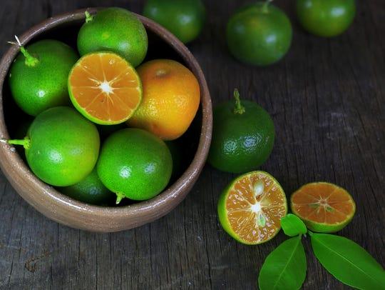 Fresh citrus calamondin fruit.