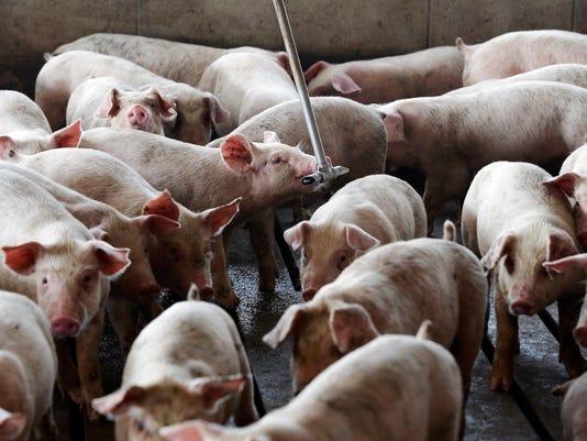 Hog Smells Lawsuits (2)