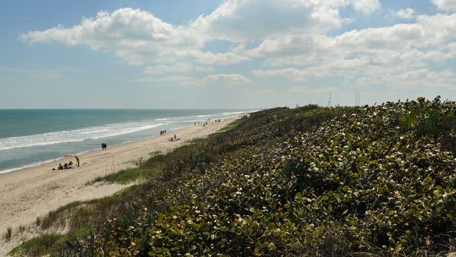 The Canaveral National Seashore includes Playalinda Beach, which is located near Kennedy Space Center.