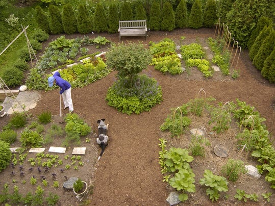 Garden pros share dirt on common mistakes that drive them crazy
