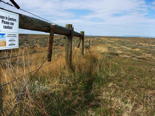 American Prairie 2