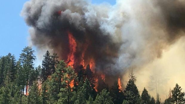 Blue Ridge Wildfire was started on June 6, 2016. The town of Payson is concerned about the fire affecting the reservoir, its future water source.