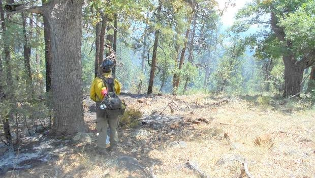 A firefighter is monitoring the perimeter of the Cooney Fire earlier this year.