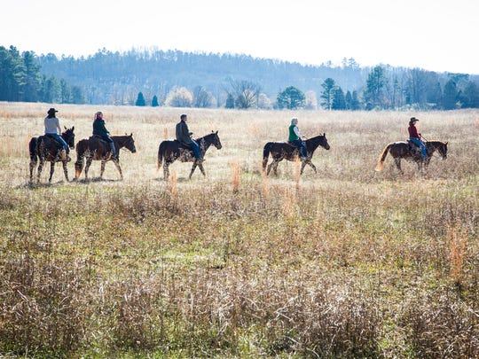 Skilled guides lead horseback rides through the winding woods and steep hills.