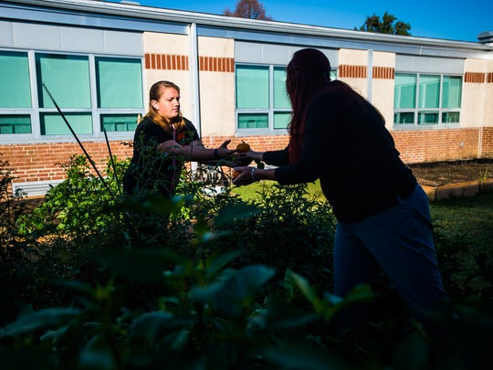 Hanover High School food services manager Crystal Gauss hands harvested vegetables from the school's garden to Gabriell Enoff in September. Gauss started the garden in the school's courtyard over the summer to use for school lunches.